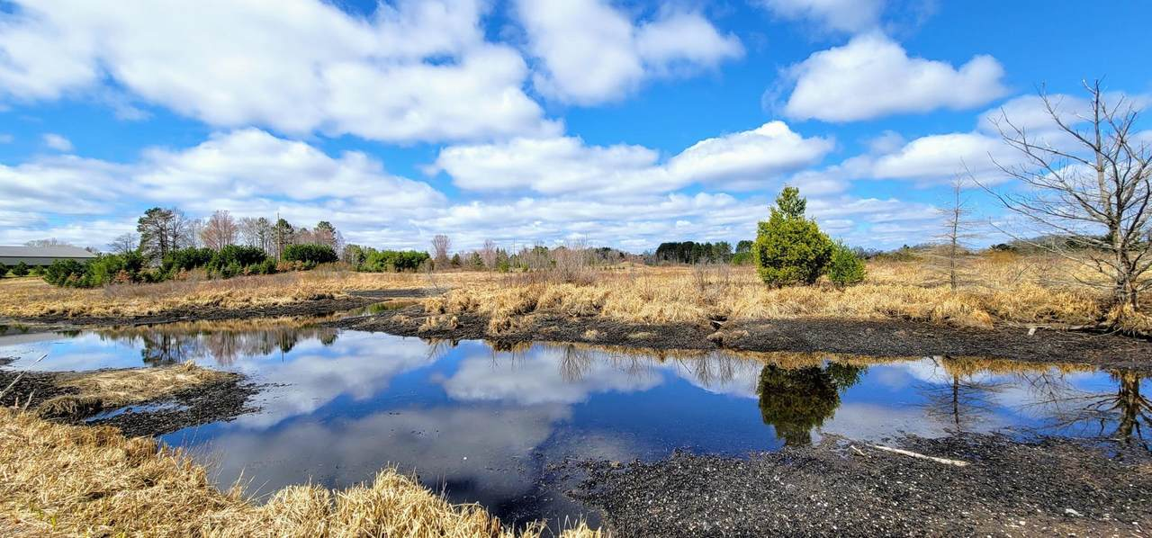 ZZ Miller Lake Road - Photo 1