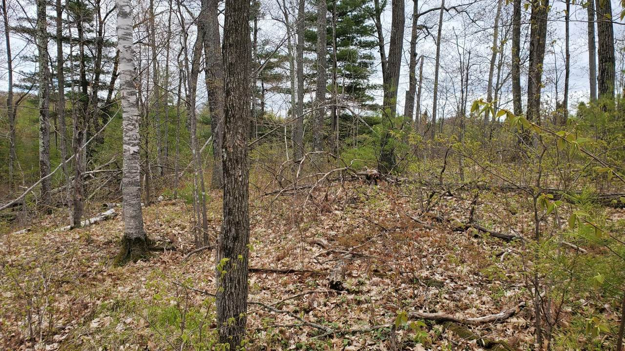 Lot 0 County Highway F - Photo 1