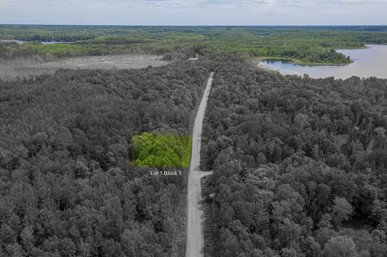 TBD Woodland Drive - Photo 1
