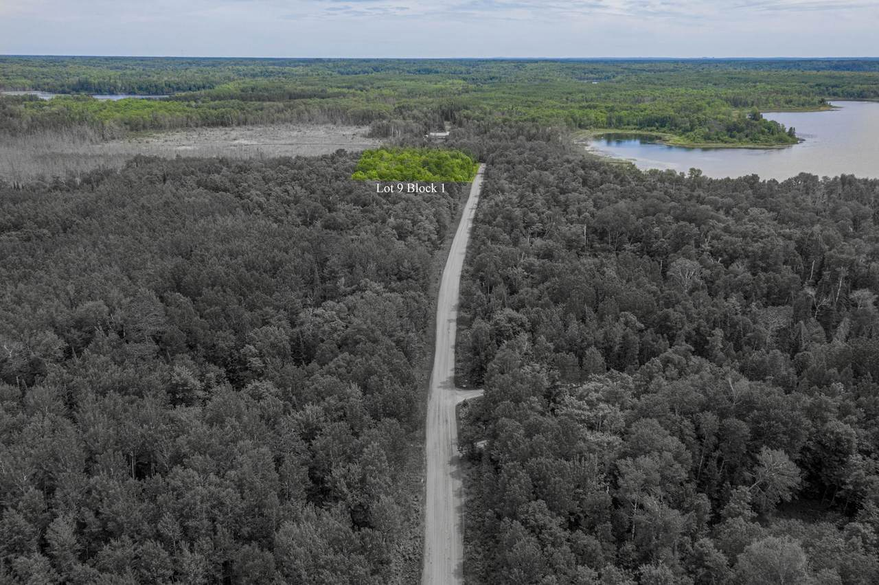 TBD 0190 Woodland Drive - Photo 1