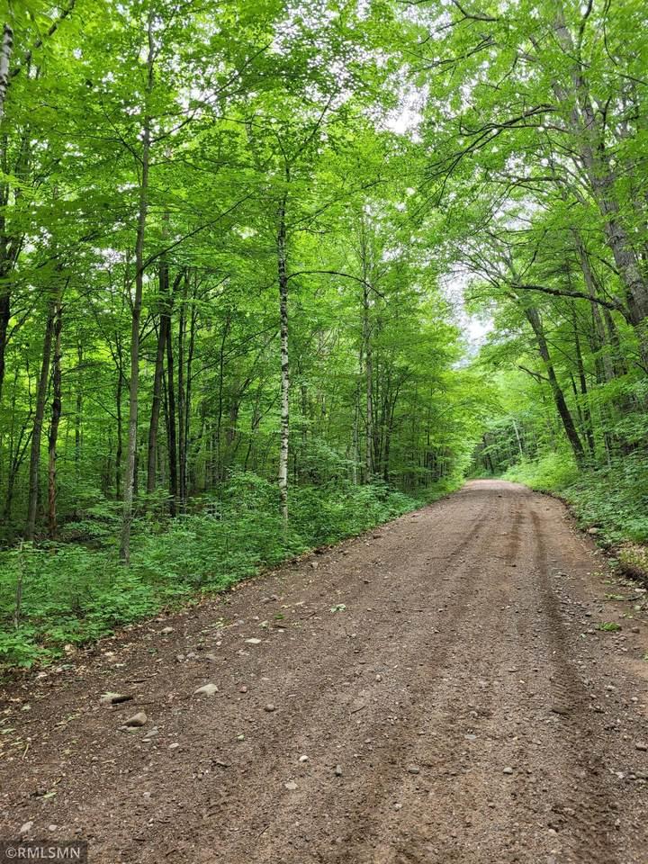Lot 4 Tuscobia Trail - Photo 1