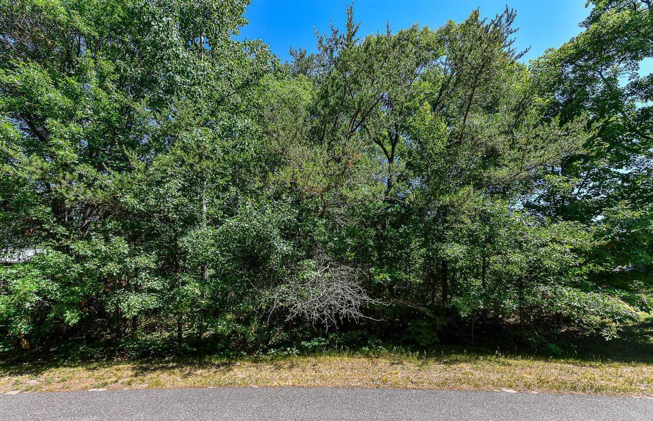 TBD Sorrel Oak Trail - Photo 1