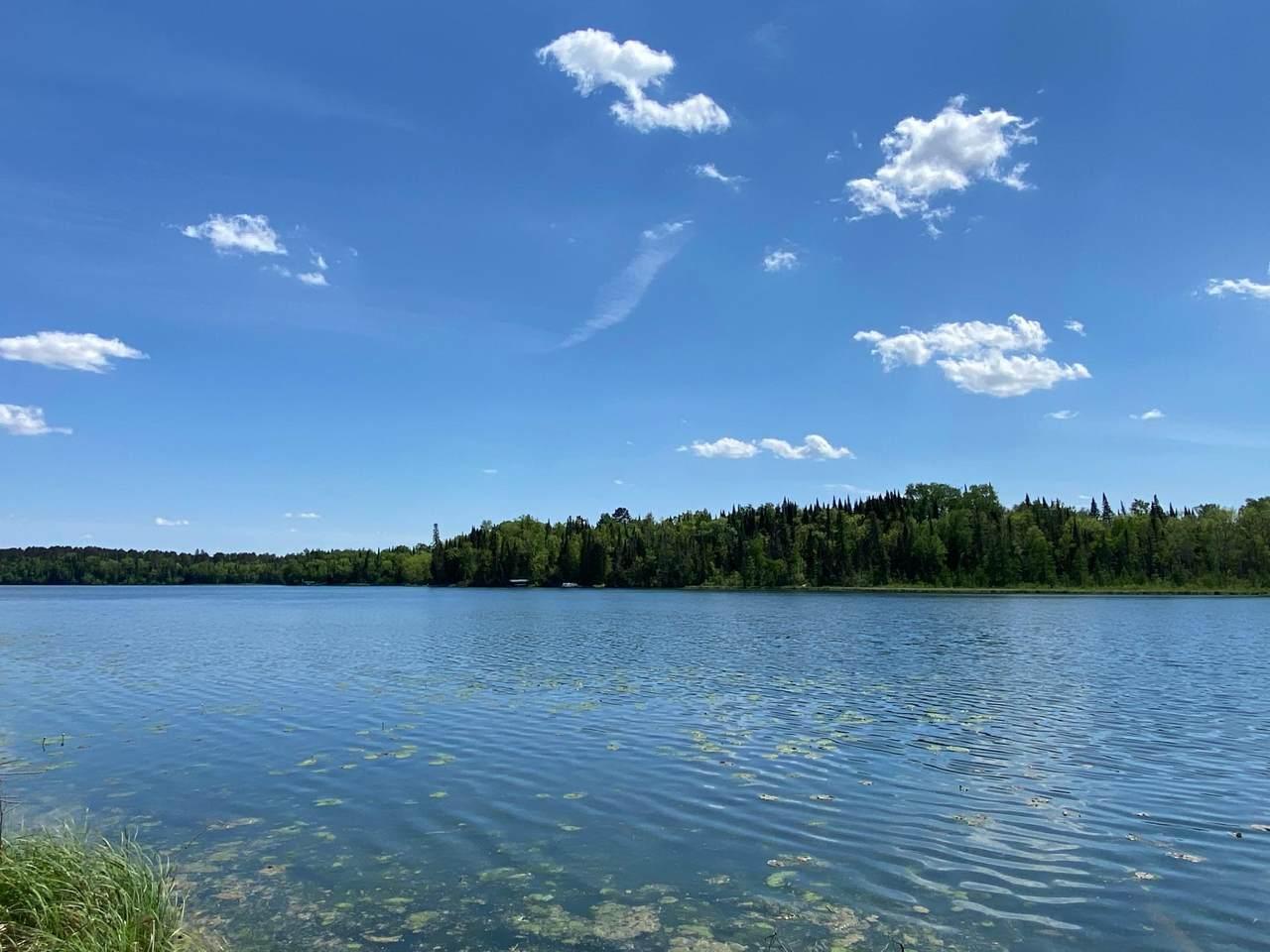 10905 Far Portage Drive - Photo 1
