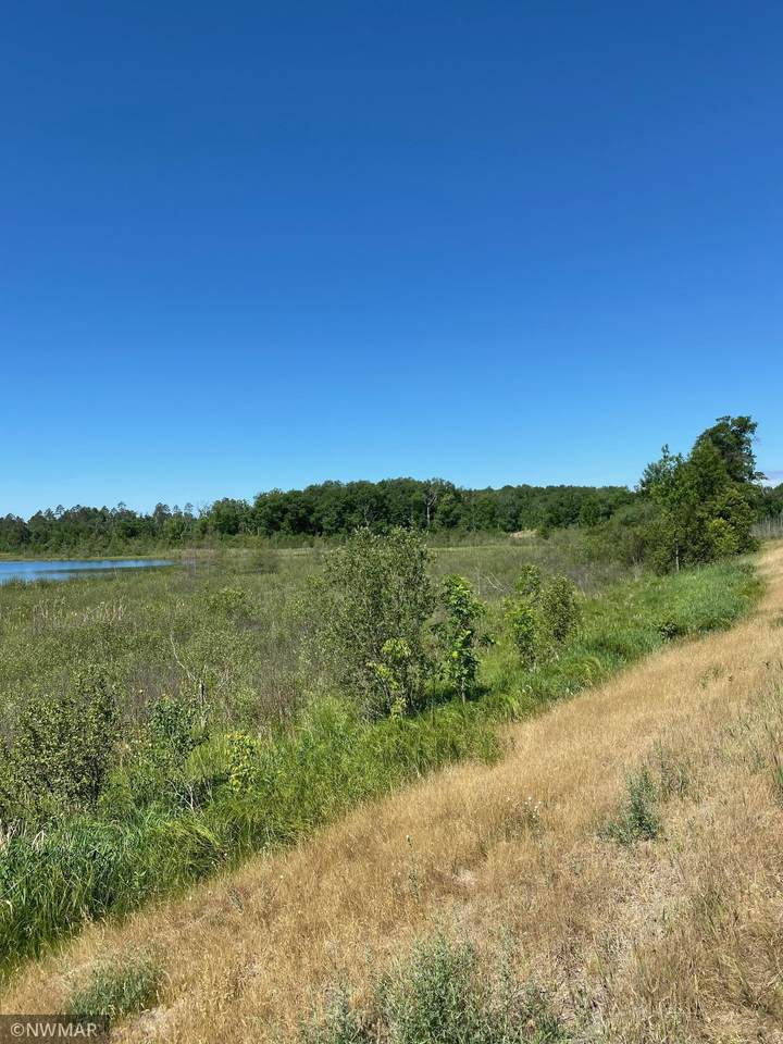 TBD Boot Lake Road - Photo 1