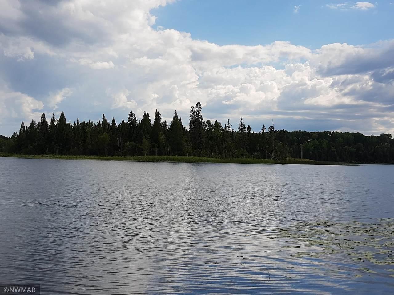 Lot 8 Whitefish Lake - Photo 1
