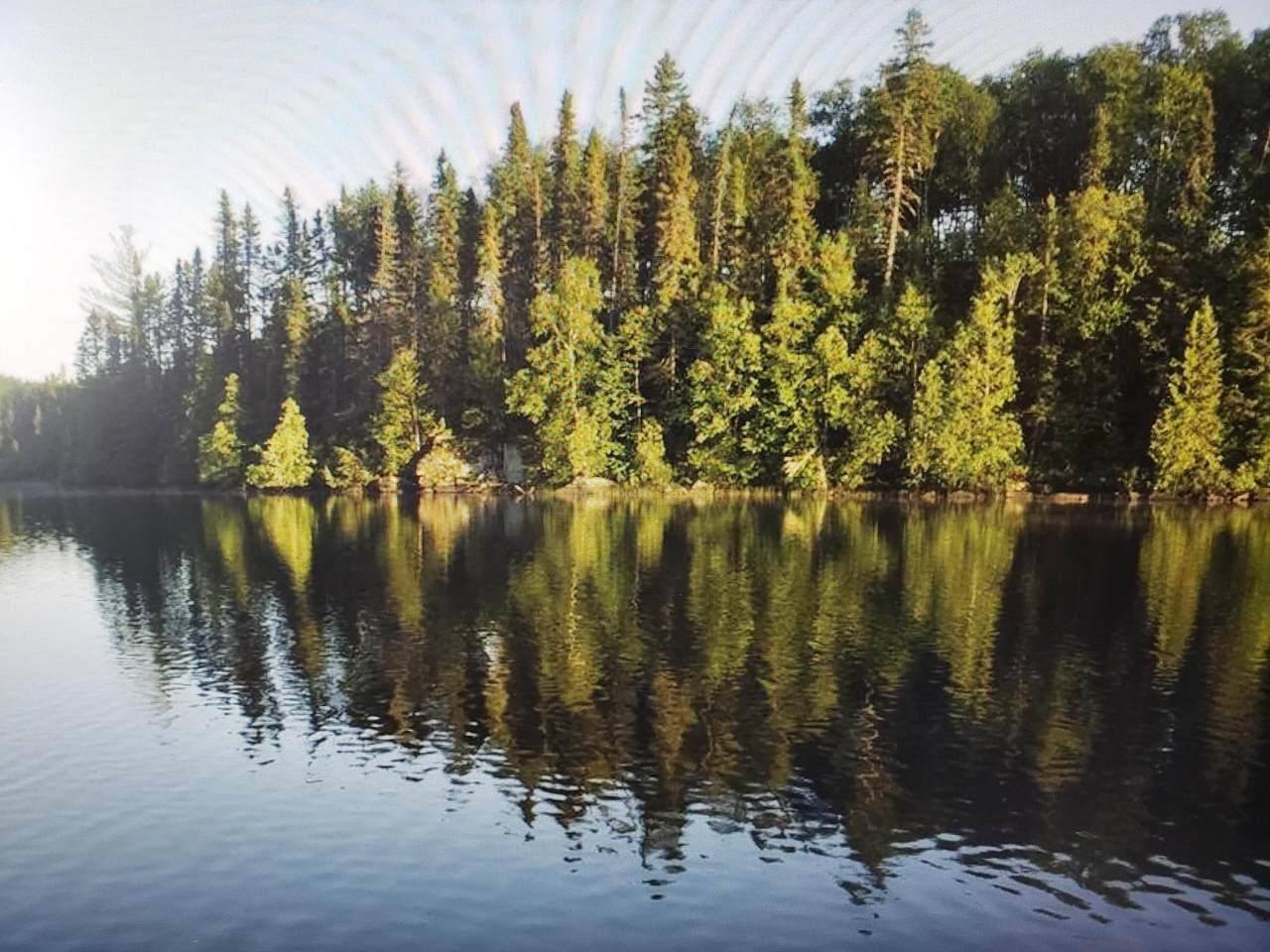39361 North Star Lake Road - Photo 1
