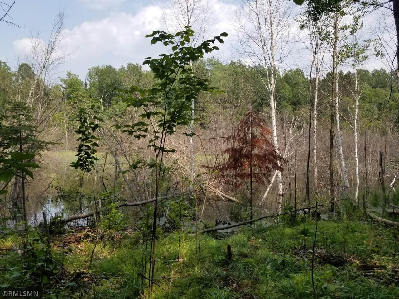TBD Yellow Birch Lane - Photo 1