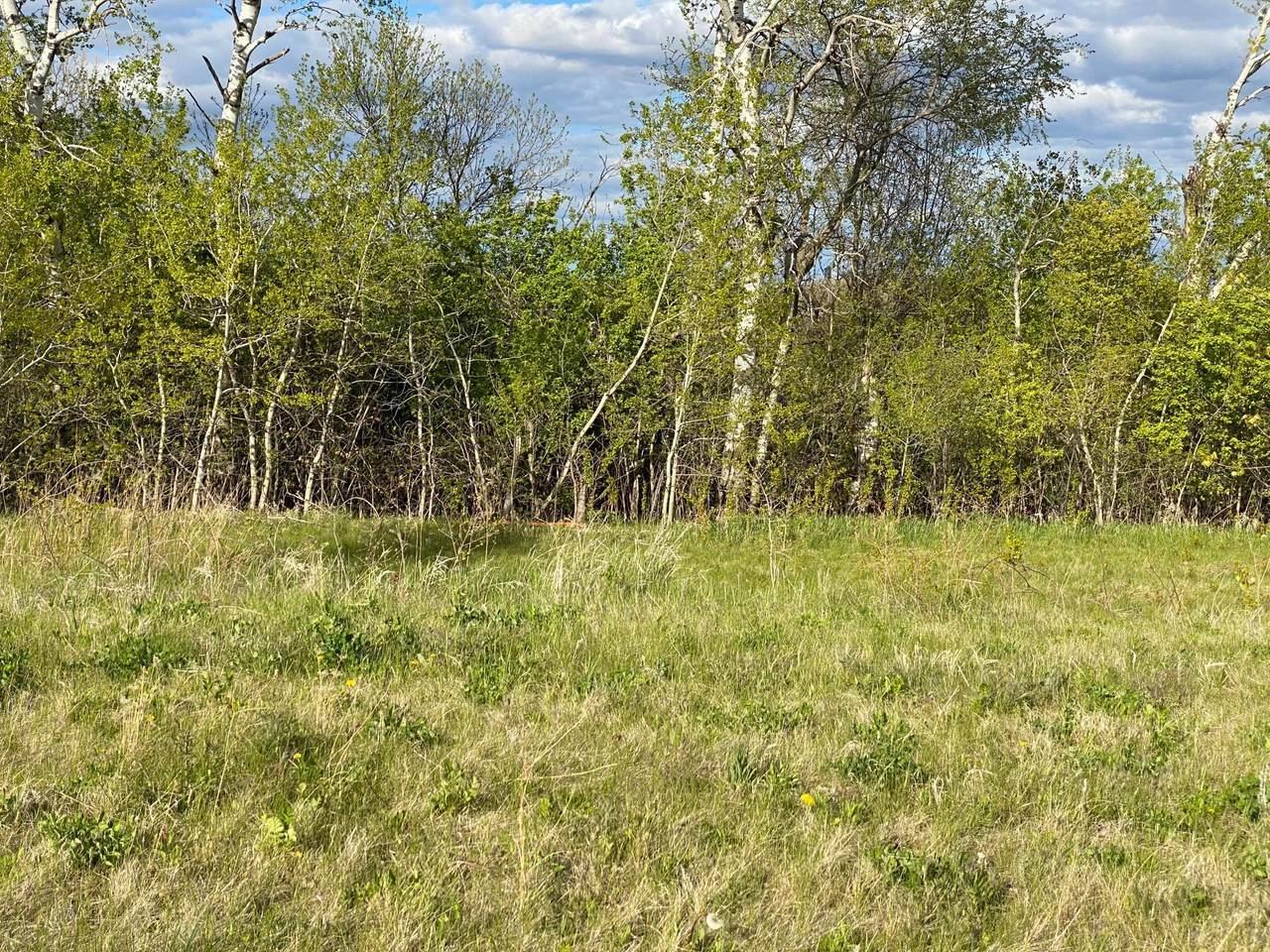 1424 Woodland Way - Photo 1