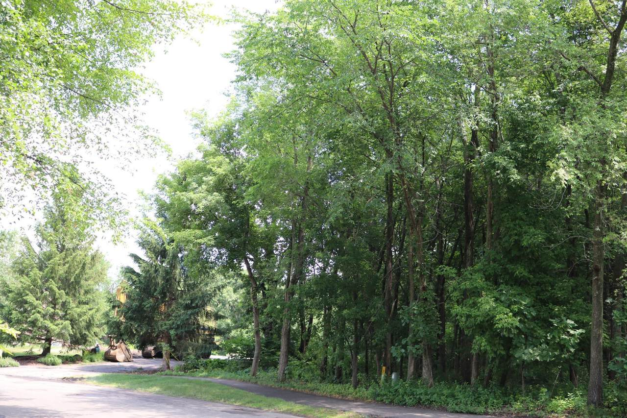 4275 Little Bluestem Trail - Photo 1