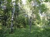 5995 Voyageurs Trail - Photo 10