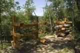 5995 Voyageurs Trail - Photo 17