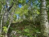 Lot 7 Wilderness Way - Photo 9