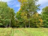 17711 County Road 41 - Photo 29