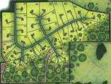 Lot 12 825th Avenue - Photo 9