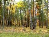 L4B2 Buckhorn Trail - Photo 5