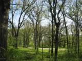 XXX Betsy Ross Road - Photo 1