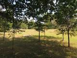 TBD Parkview Circle - Photo 8