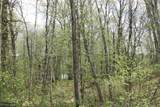 XXX Fawn Forest Lot 11 Road - Photo 1
