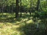0000 Trout Acres Lake Rd - Photo 2