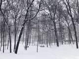 28170 Woodside Road - Photo 14