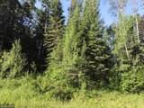 12211 Hard Pine - Photo 4