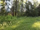 12211 Hard Pine - Photo 5