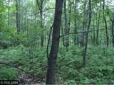 27xxx Jade Trail - Photo 11