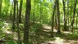 6.58 ACRES Chippewa Trail - Photo 1