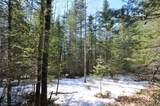 TBD Swift Lake Drive - Photo 6