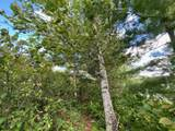 Lot 9 Wilderness Way - Photo 6