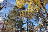 TBD Humming Bear Lane - Photo 10