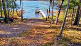 24881 Viola Lake Road - Photo 12