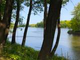 17020 Dayton River Road - Photo 2