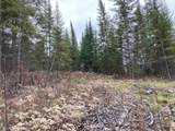 TBD Crane Lake Road - Photo 11