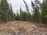 TBD Crane Lake Road - Photo 9