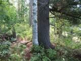 1745 Grouse Pines Lane - Photo 19