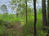 25079 Timber Tree Road - Photo 9