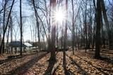 1025 Wildhurst Trail - Photo 11