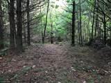 XXX Lofty Pines Road - Photo 4