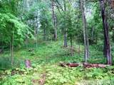 26698 Edna Lake Road - Photo 5