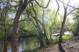 1811 Chantrey Trail - Photo 13
