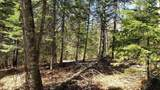 tbd Forest Rd 203 - Photo 13