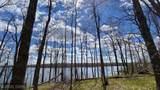 TBD Columbine Trail - Photo 14