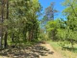 N12610 Horseshoe Bend Road - Photo 5