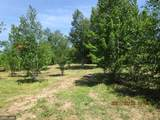 15766 State Hwy 23 - Photo 2