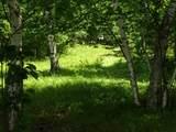 25970 Elk Haven Drive - Photo 6