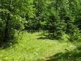 25970 Elk Haven Drive - Photo 8