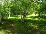 25970 Elk Haven Drive - Photo 9