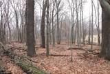 32XXX Ivywood Trail - Photo 40