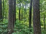 XXX Debbie Ridge Road - Photo 35